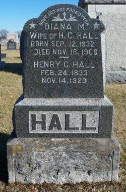 Diana M. Hall