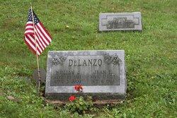 William J Delanzo