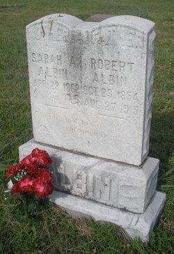 Sarah Ann <i>Heath</i> Albin