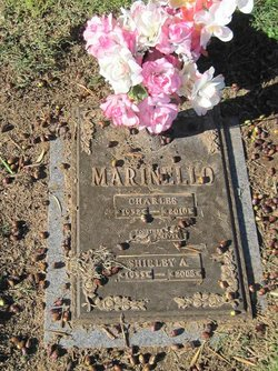 Shirley Ann <i>Agostino</i> Marinello