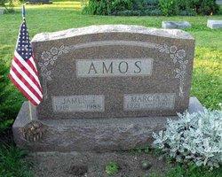 Marcia A <i>Arter</i> Amos