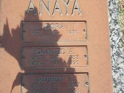 Daniel A Anaya