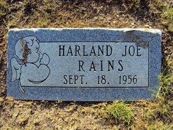 Harland Joe Rains
