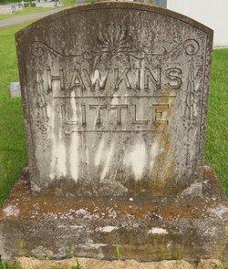 Alice E <i>Little</i> Hawkins