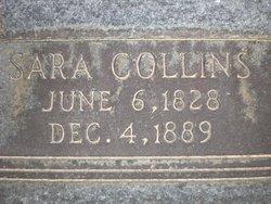 Sara <i>Collins</i> Dodson
