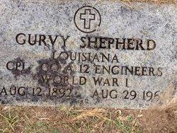 Gurvy Shepherd