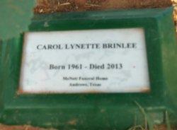 Carol Lynette <i>Ramsey</i> Brinlee