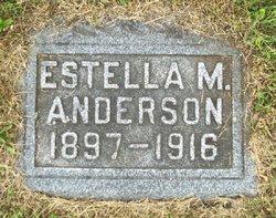 Estella May Stella <i>Shorts</i> Anderson
