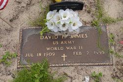 David H James