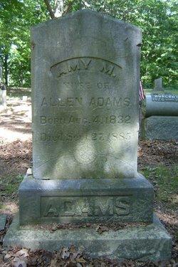 Amy M Adams