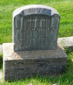 Eva J <i>Hayes</i> Carrigan