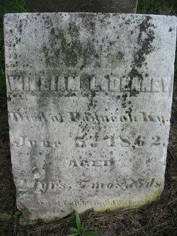 William L Denny