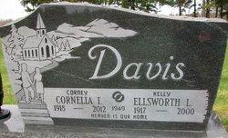 Ellsworth L. Kelly Davis