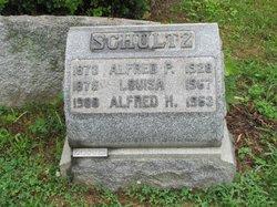 Alfred H Schultz
