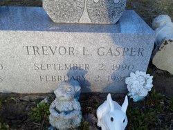 Trevor L Gasper