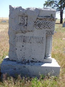 Infant Brunton