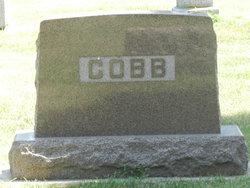 Arthur H Cobb