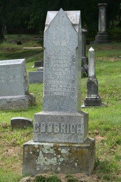 Sarah M. <i>McClure</i> Goodrich