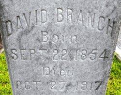 David Branch