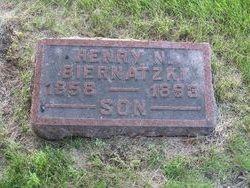 Henry N Biernatzki