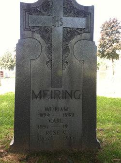 Rose V <i>Fritz</i> Meiring