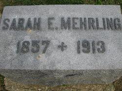 Sarah Ellen <i>Roberts</i> Mehrling