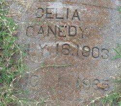 Celia <i>Hoggard</i> Canedy