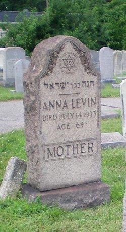 Anna Levin