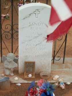 Sandy Burr