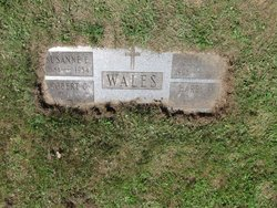 Harry A. Wales