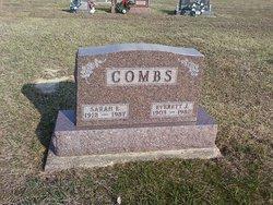 Sarah Elizabeth <i>Welch</i> Combs
