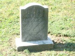 Charles C Anderson