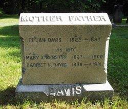 Mary Ann <i>Webster</i> Davis