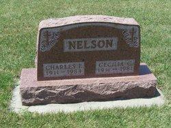 Cecilia Carolina <i>Eisenbacher</i> Nelson