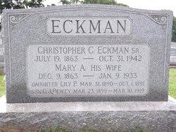 Lily P Eckman