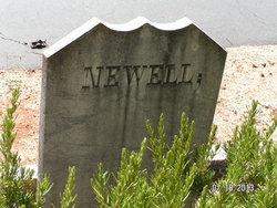 William Hamilton Newell