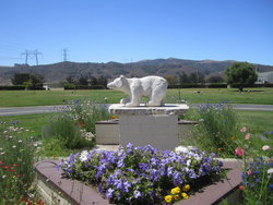 Los Osos Valley Memorial Park