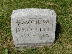 Augusta Louisa <i>Falk</i> Liebl