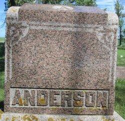 Peter Brekke Anderson