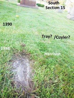 Elbert J W Cuyler