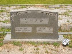 Jessie Shaw