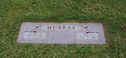 Raymond Lee Ray Murray