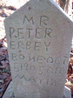 Peter Erbey