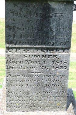 Martha Ann <i>Summer</i> Lanier