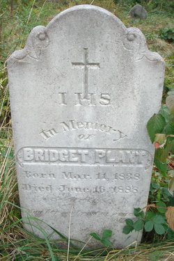 Bridget <i>Phalen</i> Plant
