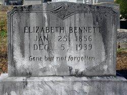 Arminda Elizabeth <i>Chastain</i> Bennett