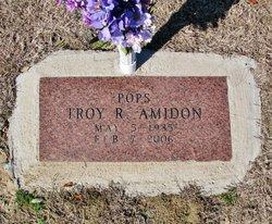 Troy R. Amidon