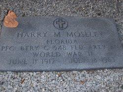 Harry Mathew Moseley