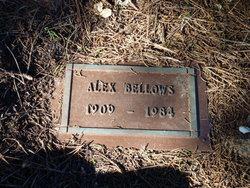 Alex Bellows