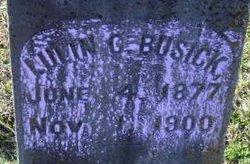 Lulin C. Busick